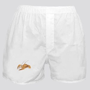 Lobster with long antennas Boxer Shorts