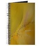 Enzoart Journal