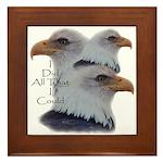 Eagle All That I Could Framed Tile