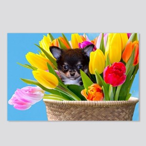 Easter Chihuahua Postcards (Package of 8)