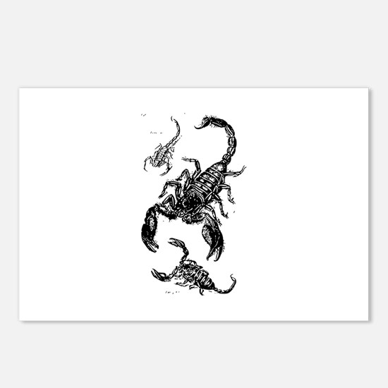 Black Scorpions Postcards (Package of 8)