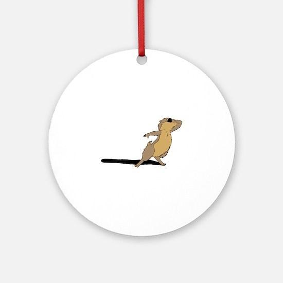 Groundhog sad Round Ornament