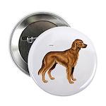Irish Setter Dog Button