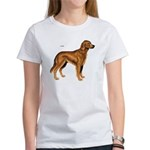 Irish Setter Dog Women's T-Shirt