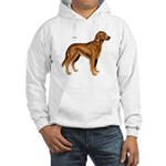 Irish Setter Dog Hooded Sweatshirt