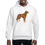 Irish Setter Dog (Front) Hooded Sweatshirt