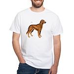 Irish Setter Dog White T-Shirt