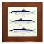 Capelin Framed Tile