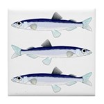 Capelin Tile Coaster
