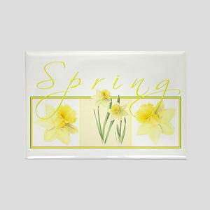 Spring Magnets