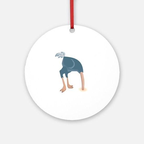 ostrich head in sand round ornament