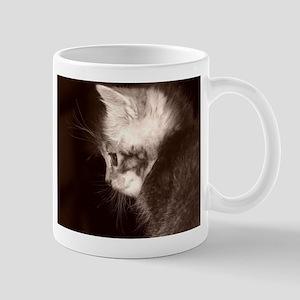 fuzzy kitten Mugs