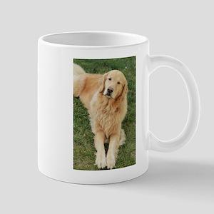 golden retriever on grass reclining Mugs