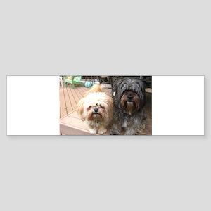 dark and light dog Bumper Sticker