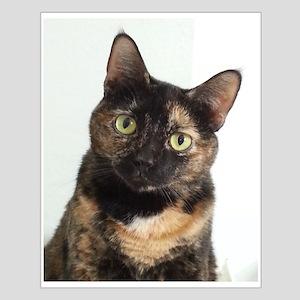 Tortie Cat Posters