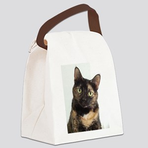 Tortie Cat Canvas Lunch Bag