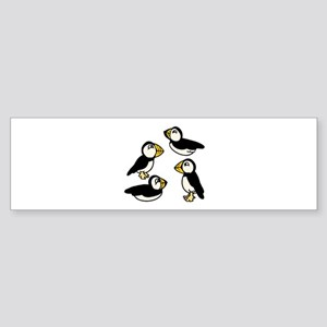 Puffins Bumper Sticker