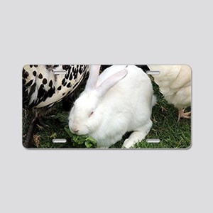 Cute white pet rabbit Aluminum License Plate