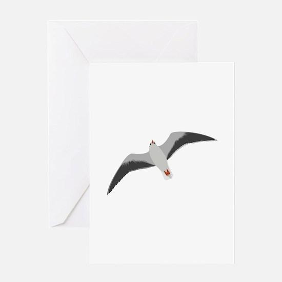 Sea gull seagull Greeting Cards