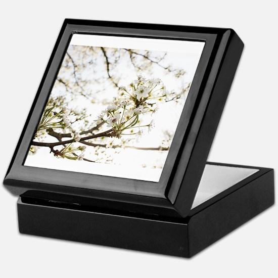 White Blossoms II Keepsake Box