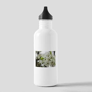 Speckled Sakura Stainless Water Bottle 1.0L