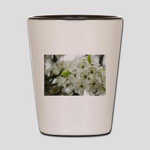 Speckled Sakura Shot Glass