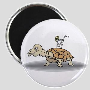 Tortoise with Lemonade Magnets