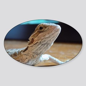 My Little Beardie Sticker