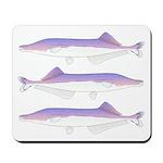 Cornish Jack Fish Mousepad