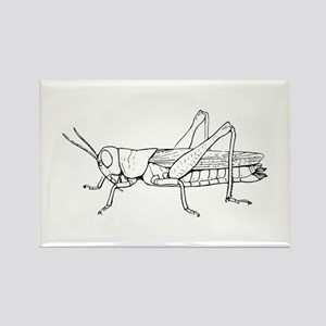 Grasshopper silhouette Magnets