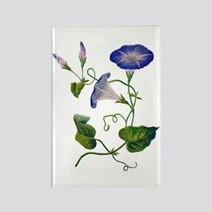 MORNING GLORY Rectangle Magnet