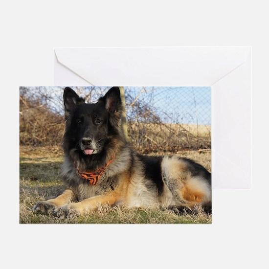 Cute Long hair german shepherd Greeting Card