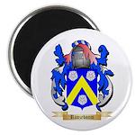Roozeboom Magnet