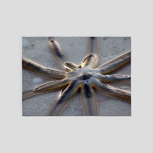 Starfish 5'x7'area Rug
