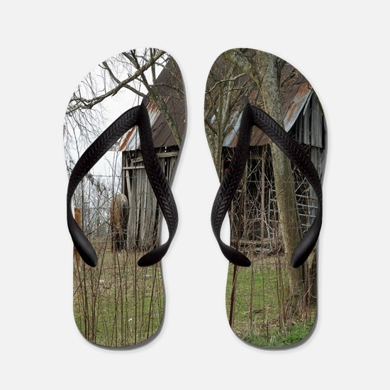 antique barn And Cows Flip Flops