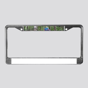 Hiking, Torres del Paine, Chil License Plate Frame