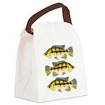 Banded Jewel Cichlid Canvas Lunch Bag