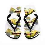 Banded Jewel Cichlid Flip Flops