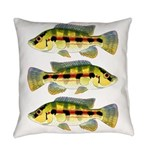 Banded Jewel Cichlid Everyday Pillow
