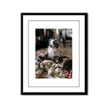 Guarding the wool Framed Panel Print