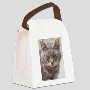 Gray Tabby Cat Canvas Lunch Bag