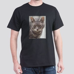Gray Tabby Cat T-Shirt