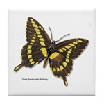 Giant Swallowtail Butterfly Tile Coaster