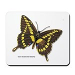 Giant Swallowtail Butterfly Mousepad