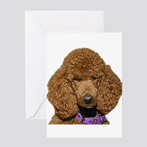 bella REVERSED size 800 Greeting Cards
