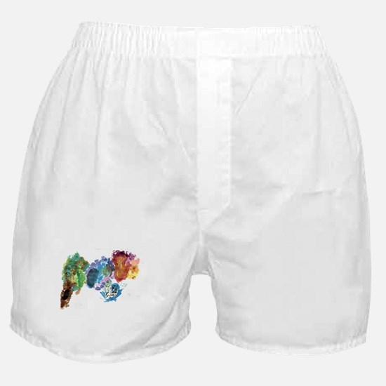 Cool Colors Boxer Shorts