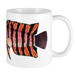 Ornate ctenopoma Mugs