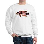 Ornate ctenopoma Sweatshirt