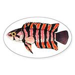 Ornate ctenopoma Sticker