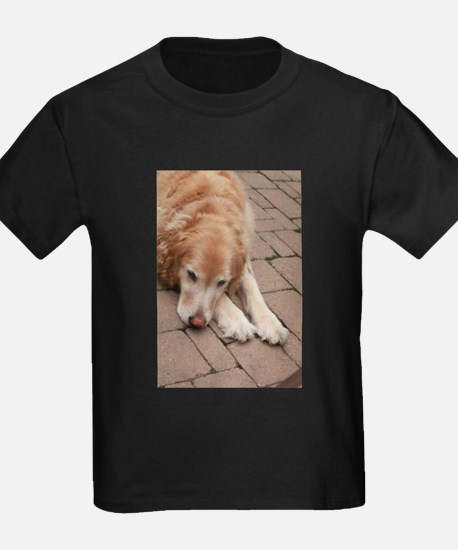 Nala the golden retriever reclining on bri T-Shirt
